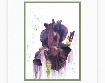 Iris painting, Print from my original watercolour flower painting, botanical picture, dark purple wall art, Iris watercolor, Bearded Iris