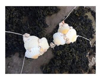 Maidens seashell bikini top