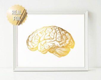 Science Art Brain Art Print - Science Poster Gold Foil Print - Anatomy Poster Anatomy Art - Human Brain Medical Art - Medical Student Gift