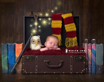 Harry potter inspired owl and scarf set,Newborn harry potter photo prop