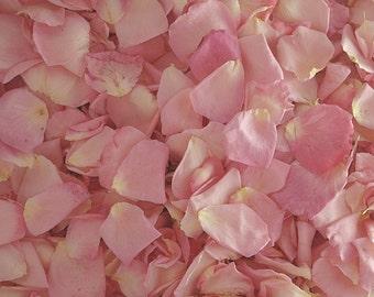 Pink Rose Petals. Flower Petals. 200 CUPS. Freeze dried Petals. Flower Confetti. Dried Flower Petals. Wedding Petals.  Grown in the USA!