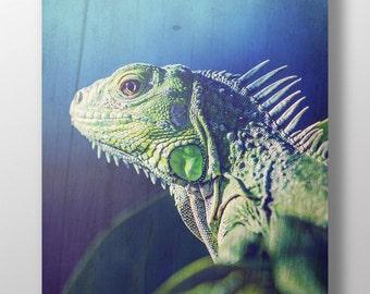 Grunge Iguana lizard reptile vintage wall art decor instant download