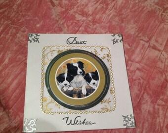 Greetings Card/Animal Birthday Greetings Card/Dog Greetings Card/Dog Birthday Card/Border Collie Dog Greetings card