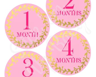 Monthly Baby Stickers - Baby Age Stickers - Baby Milestone Sickers - Baby Girl - Pink and Gold - Baby Photo Prop
