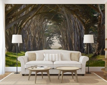 road through a tree tunnel mural self adhesive peel and stick large wall mural
