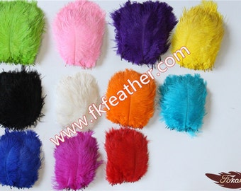 "6""-8"" Ostrich Feather"