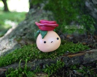 Grumpy Rose Slug Peach/pomegranate
