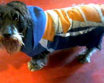 Hoody for Dogs