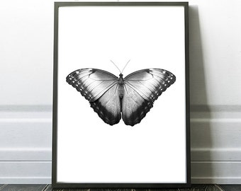Black and White Art, Butterfly Print, Insect Art, Butterfly Wall Art,Modern Printable Art,Home Decor Art,Minimalist Nature Print,Butterflies