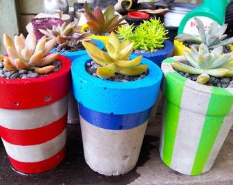 Small and Colorful Concrete Planter