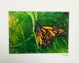 Matted print 5X7 Monarch 1