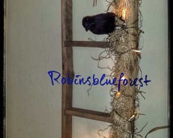 Ladder Black Crow H0002