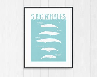 Whale Print, Whale Art, Whale Poster, Nursery Wall Art, Nursery Decor, Nursery Art, Nursery Prints, Blue Whale, Sperm Whale, Humpback Whale
