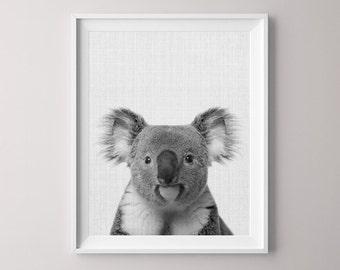 Animal Printable, Koala Bear, Canvas Pictures, Canvas Print, Peekaboo Animals, Nursery Print, Nursery Animal Print, Babe Shower, Kids Room