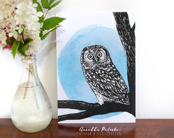 One amazed boreal owl, small poster, A5