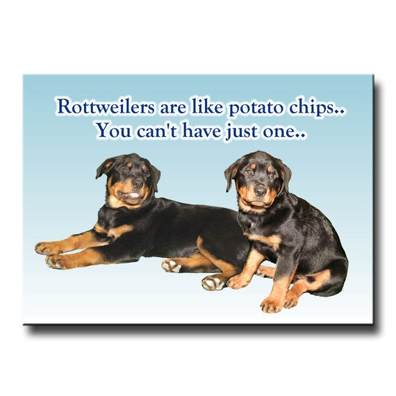 Rottweiler Can't Have Just One Fridge Magnet