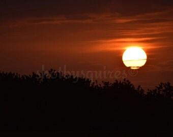 Sunset Over Shurton - Wild Nature Photography - Somerset - Wall Art - Home Decor - Poster - Photograph - Framed Print