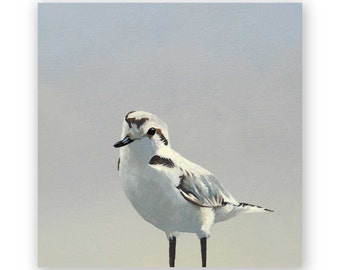 Plover - 8 x 8 Wings on Wood Decor