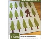 Legendary quilt pattern from Elizabeth Hartman - lap quilt or floor pillow