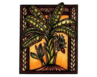 Mai'a- Banana Plant