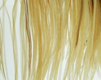 """10 Natural Light Ginger Variant, SKINNY Hair Feather Extensions, 5"""" to 8"""" Long"""