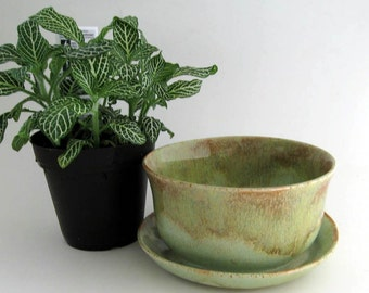 Stoneware Planter with Attached Saucer - Succulent Planter - Ready to Ship