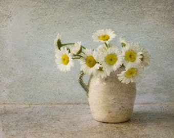 Still Life Photography, White Daisy Art,  Vintage Inspired,  Flower Photography, Farmhouse Decor,  Rustic Wall Decor