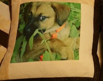 Handmade Customized Home Decor Pet Photo Pillow