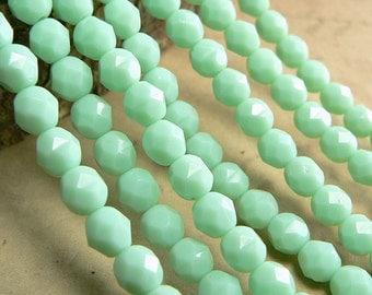 Mint Green Czech Glass Beads Round Opaque Fire Polished 6mm (25)