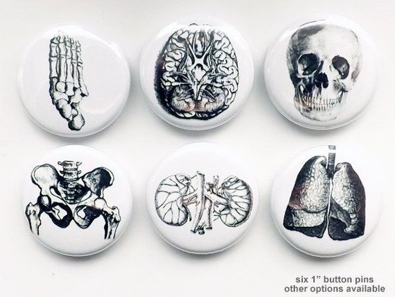 Medical human anatomy Gift Halloween BUTTON PINS flair Badge lung brain skull science body student party favor magnet goth male nurse bones