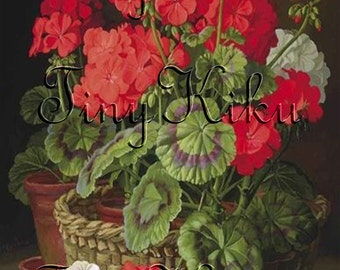 RED GERANIUMS with One WHITE Geranium in Pot Vintage Print - Fabric Block Panel. Applique, Quilting, Sewing, Crafting
