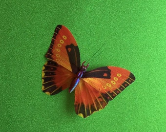 Bright Butterfly Hairclip, Hair Accessory