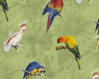 Birds Rainforest Green Whistler Studios Fabric 1 yard