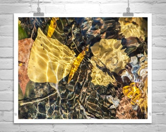Water Art, Autumn Leaves, Water Reflections, Photo Print, Nature Photography, Water Ripples, Leaf Art, Fall Leaves, MurrayBolesta
