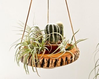 Wood Bark Hanging Planter, Vintage Air Plant Container