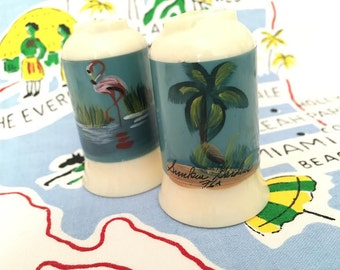 Vintage Florida salt and pepper shakers Sunken Gardens St. Pete 1940s flamingo palm tree Floridiana