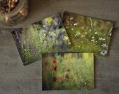Summer... Set of 3 postcards.