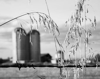 Silo Photo, Farm Photograph, Rustic Wall Decor, Farmhouse Decor, Adirondack Barn, Fine Art Photography, Wall Art, Black and White, Grey