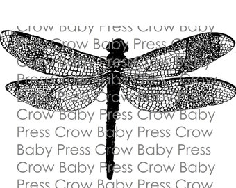 Printable Dragonfly Drawing Instant Download Coloring Page Digi Stamp Clip Art for Handmade Projects