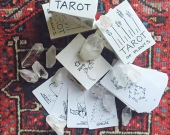 the Tarot of Plants Deck - full moon edition