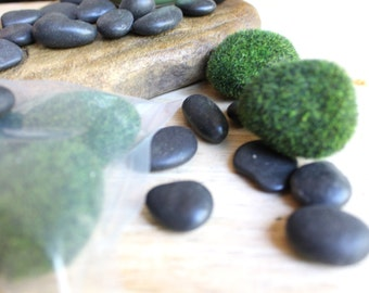 Zen Garden Starter Kit 5 Faux Moss Rocks and 8 ounces of Black Polished Stones