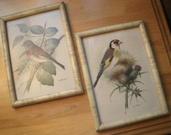 Vintage Ph. Gonner Bird Prints
