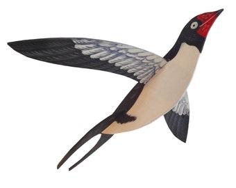 Flying swallow bird