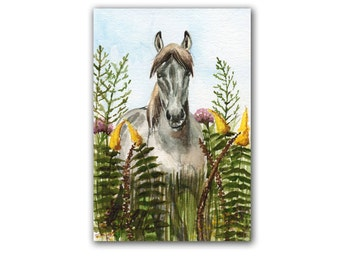 Tarpan Horse in Wild Flowers  LLMartin Original Watercolor Painting Virginia Country  Free First Class Shipping USA