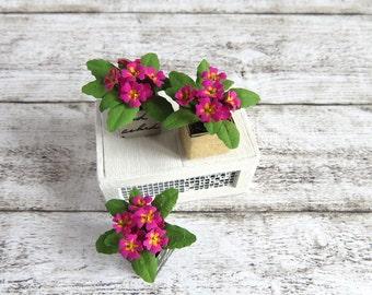 Pot of fuchsia primroses for dollhouse in 1:12 scale