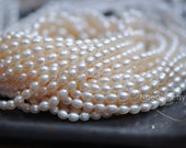 White Oval Freshwater Pearl Beads 5x6mm  -(PL02-10)/ full strand