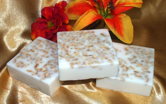 FREE SHIPPING Bath Soap  Olive Oil Vegan Soap with Oatmeal   5 oz