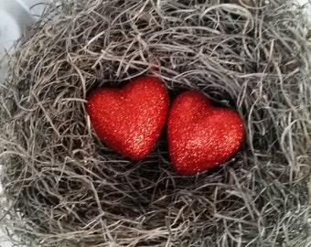 Bird Nest Valentines Day with Red Glitter Hearts AMarigoldLife