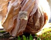 Soft Camel Cream Sari Silk Ribbon