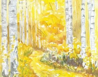 Aspen Trees Watercolor Painting - 11 x 14 - Giclee Print - Autumn Decor Fall Decor